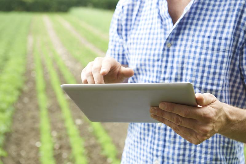 Projectos e Soluções Agrícolas