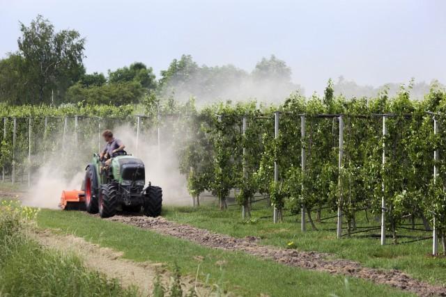 Serviços em campos agrícolas
