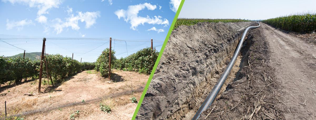 Projectos e Construções Agrícolas